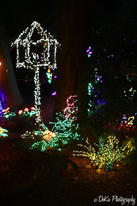 XmasLights(web)_0005