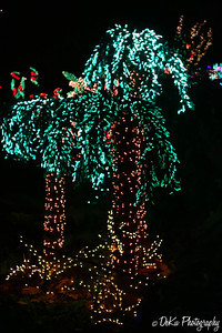 XmasLights(web)_0028