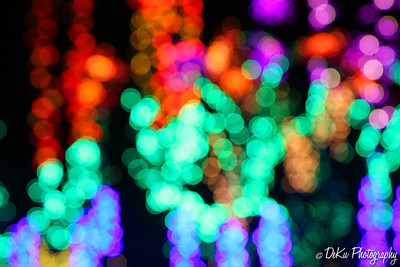 XmasLights(web)_0037