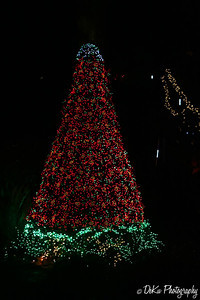XmasLights(web)_0032