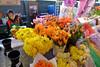 Flowers & Fantasies 1