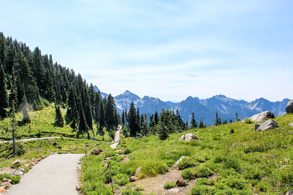 Mount Rainier is one of the best Seattle Day Trips