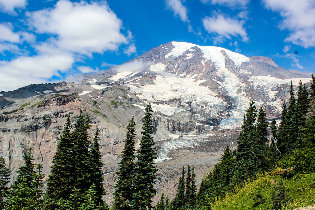 a mt. rainier day trip is awesome!
