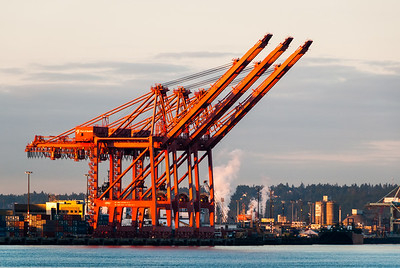 Port of Seattle Cranes