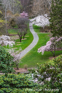 Washington Park Arboretum, Seattle