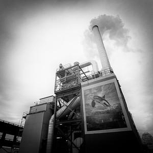 Jaden-Nyberg-2015-Smoke-Stack-Seattle-Edit