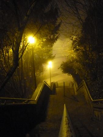 Foggy Stepts