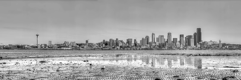 Seattle Low Tide