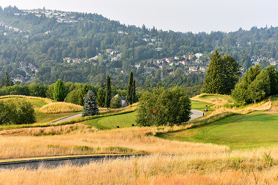 Nature by golf course - Bellevue, WA