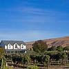 Estate Winery