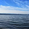 Sailboats in Puget Sound, with Olympic Mountains in background