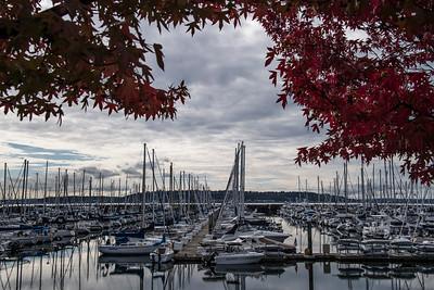 Seattle, Mt Rainier, Oregon Coastline