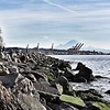 Gantry cranes from Myrtle Edwards Park with Mt. Rainier in background