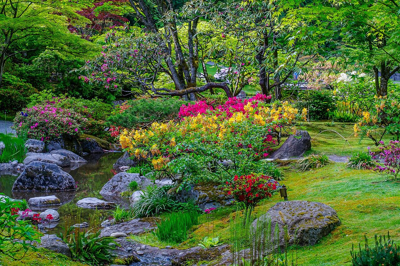 Spring Florals