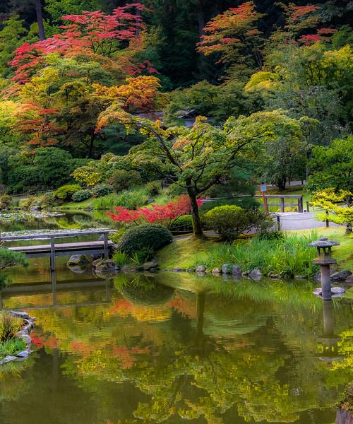 Garden Tranquility
