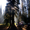 Camping in shadows at Crater Lake<br /> <br /> Photographer's Name: Tom Chwojko-Frank