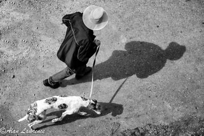 Dog Walker  Photographer's Name: Alan Lawrence