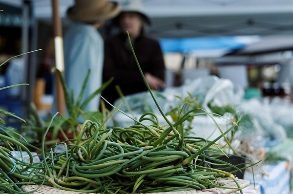 farmers market in moscow, idaho  Photographer's Name: Steven Lawrence