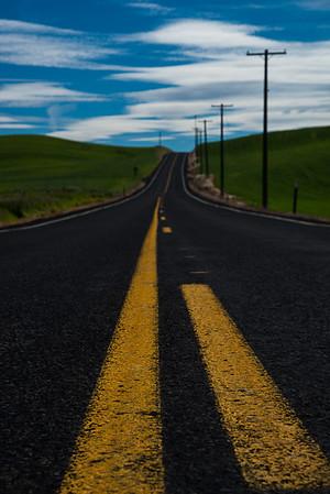 Path to rolling hills  Photographer's Name: Nitin Kansal