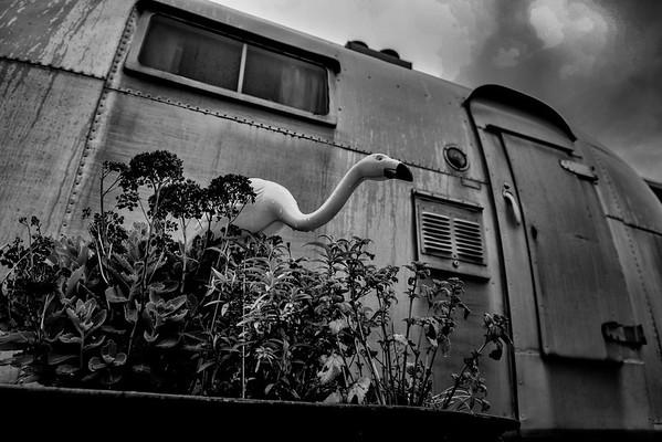Home Sweet Home  Photographer's Name: Frank Dobrushken
