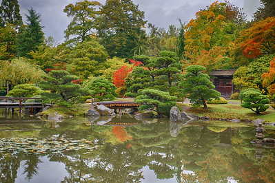 Japanese Gardens  Photographer's Name: Alan Lawrence