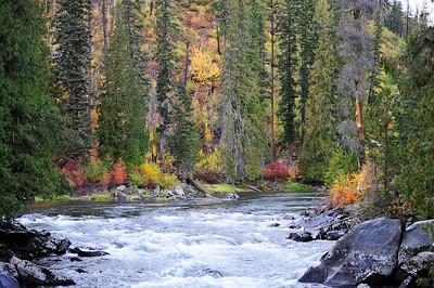 A River Of Color  Photographer's Name: Greg Rubstello