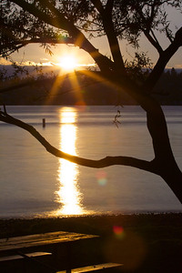 O.O. Denny Sunset  Photographer's Name: Tom Chwojko-Frank