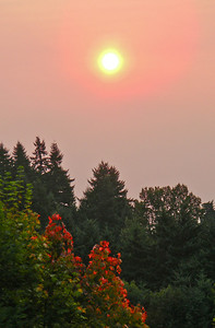 Hazy Sunrise  Photographer's Name: Dorrena  Ortega