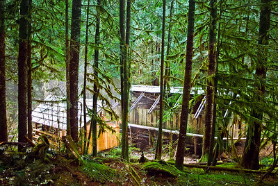 """BAGBY HOT SPRING:  This is a shot of the hot spring and the structures which house the tubs.  It's nestled deep in the woods and is free to the public.  We read in a guide book that  """"nudity is to be expected"""".  And they were right..."""
