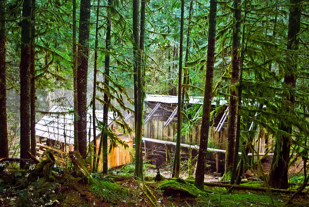 "<b>BAGBY HOT SPRING:</b>  This is a shot of the hot spring and the structures which house the tubs.  It's nestled deep in the woods and is free to the public.  We read in a guide book that  ""nudity is to be expected"".  And they were right..."