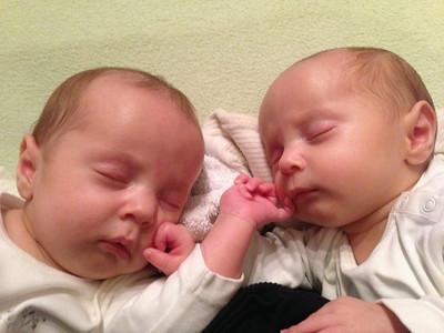 Sebastian (left) & Orlando (right) sleeping - 10 Weeks Old