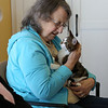 HOLLY PELCZYNSKI - BENNINGTON BANNER Linda Holland of Bennington holds a 4 month old kitten named Clark on Wednesday morning during a visit from Second Chance Animal Center at Bennington Project Independance