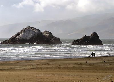 Late Afternoon Beach Walk (San Francisco)