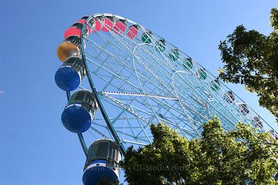 Texas Wheel