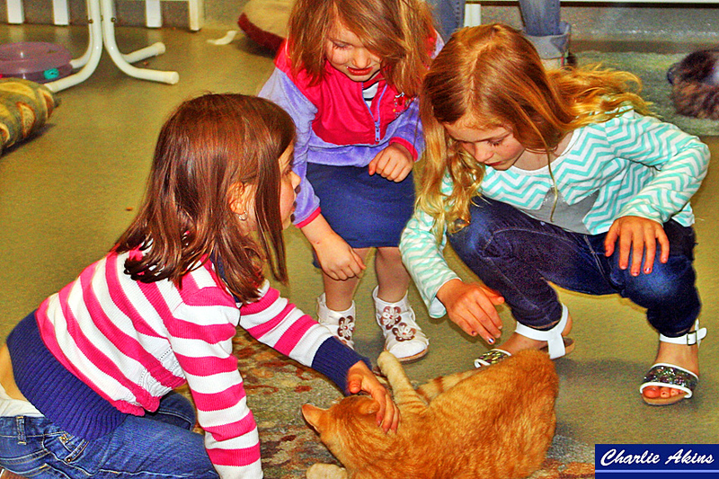 These kids love this cat.