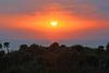 North Captiva sunset