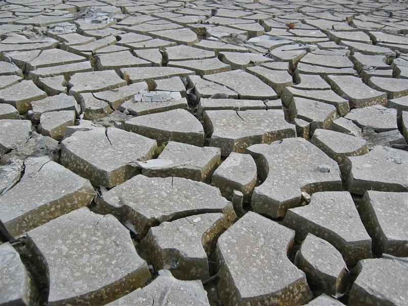 Dried mud flat