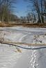 Snowy path, Linden Lake WI