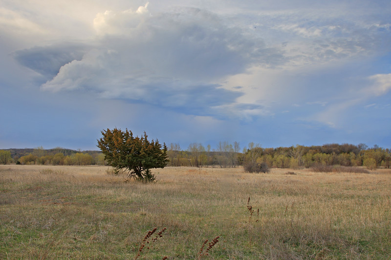 Storm over the prarie