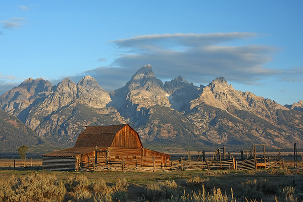 More Tetons/Yellowstone