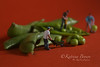 Construction Workers in Conceptual Food Imagery With Snap Peas