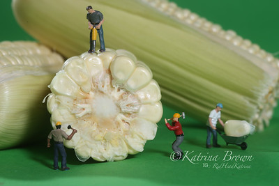 Miniature Construction Workers in Conceptual Food Imagery With Corn