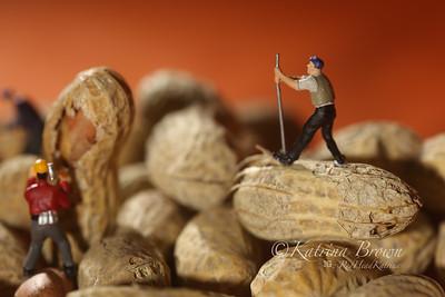 Plastic People Working on Peanuts