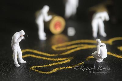 Tiny Miniature Scaled People in Curious Concepts