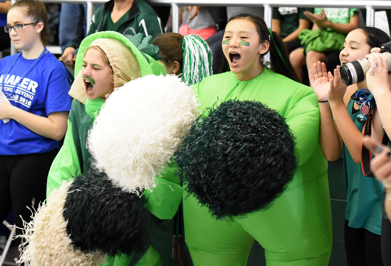 STAN HUDY - SHUDY@DIGITALFIRSTMEDIA.COMFans of the Shenendehowa girls swimming and diving team cheer their support in their blow up costumes during the Section II Divsion I swimming and diving championships Saturday, Nov. 5, 2016.