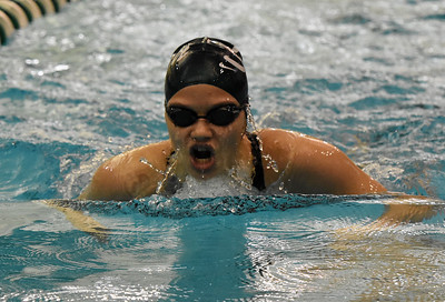 STAN HUDY - SHUDY@DIGITALFIRSTMEDIA.COM Shenendehowa sophomore Shauna Killane swims the breast stroke leg of the 200-yard IM at the Section II Div sion I swimming and diving championships Saturday, Nov. 5, 2016.