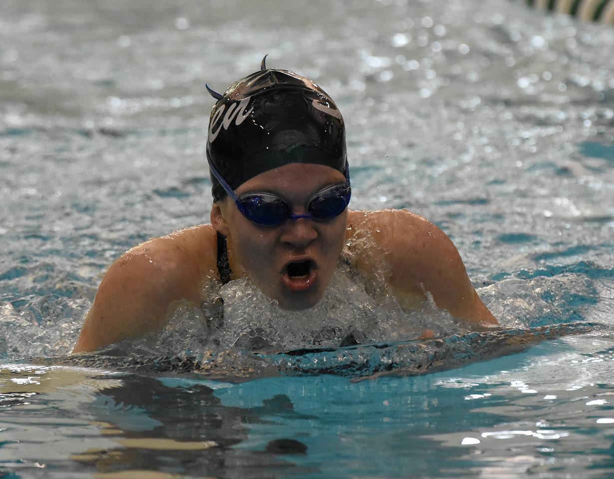 STAN HUDY - SHUDY@DIGITALFIRSTMEDIA.COMShenendehowa junior Jessica Salmon swims the breast stroke leg of the 200-yard IM at the Section II Divsion I swimming and diving championships Saturday, Nov. 5, 2016.