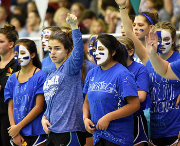 STAN HUDY - SHUDY@DIGITALFIRSTMEDIA.COM Members of the Saratoga Springs dive team cheer on their teammates at the Section II Divsion I swimming and diving championships Saturday, Nov. 5, 2016.