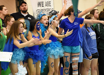 STAN HUDY - SHUDY@DIGITALFIRSTMEDIA.COM Members of the Saratoga Springs dive team cheer on their teammates in their spirit costumes at the Section II Divsion I swimming and diving championships Saturday, Nov. 5, 2016.