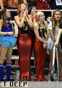 STAN HUDY - SHUDY@DIGITALFIRSTMEDIA.COM Who better to cheer for girls duirng the Section II championships than a couple of mermaids? Seen here during Saturday's Section II Division I swimming championships at the Shenendehowa Aquatics Center, Nov. 5, 2016.